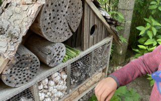 Wald - Ziel unseres Wandertages, Montessorischule Beuren, Wandertag